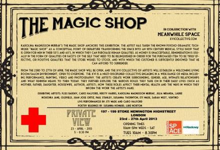 magic shop, meanwhile space, laurie nouchka, xvi artists, art, exhibition, london, private view, stoke newington,