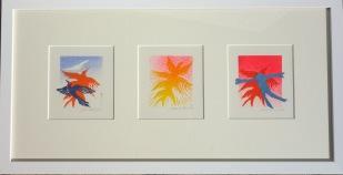 Jane Oldfield, Flying linocuts