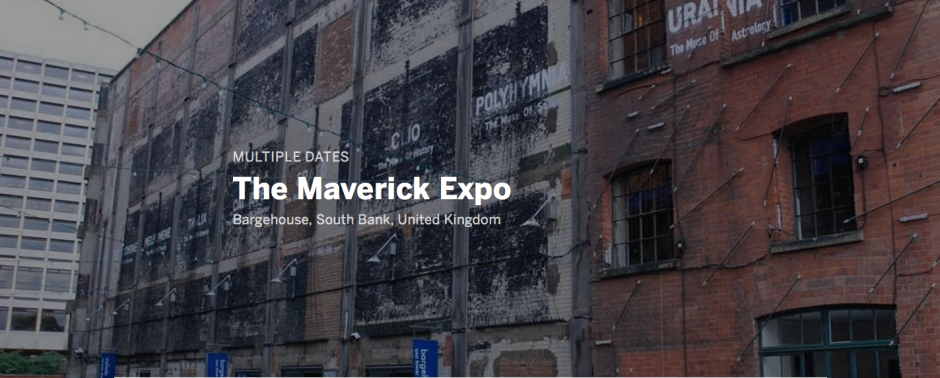 maverick expo xvi collective animamus art salon